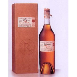 Cognac 1991 Raymond Ragnaud