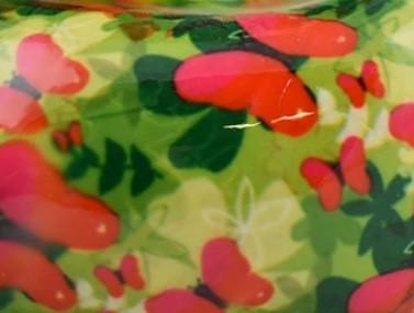 vert - papillon rouge