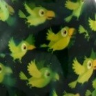 vert - perruches